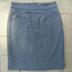 Gray Worthington Lined Skirt, Size 10 Petite